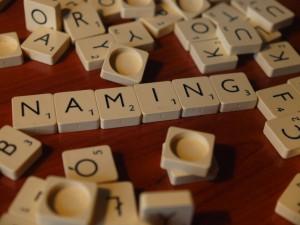 Naming - nazwa produktu jako znak towarowy